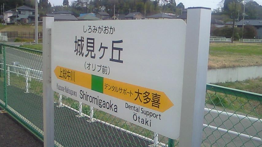 菜の花に染まる駅!!